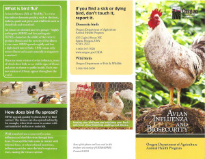 Oregon Dept. of Agriculture's new brochure on Avian Influenza.